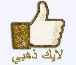 17184_458526147644534_7923944831451533840_n.jpg