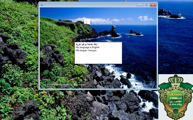 ويندوز 1.png