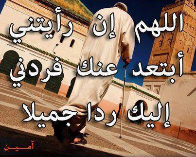 561138_492859594058239_565851685_n.jpg
