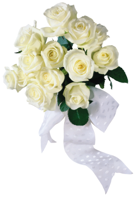 white_roses_PNG2792_.png