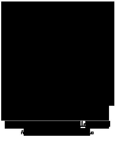 d1gX1.png
