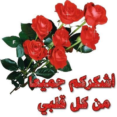 12295417_1698271127076895_6882267775874850087_n.jpg
