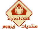 Logo-zyzoom-2017-Small.png
