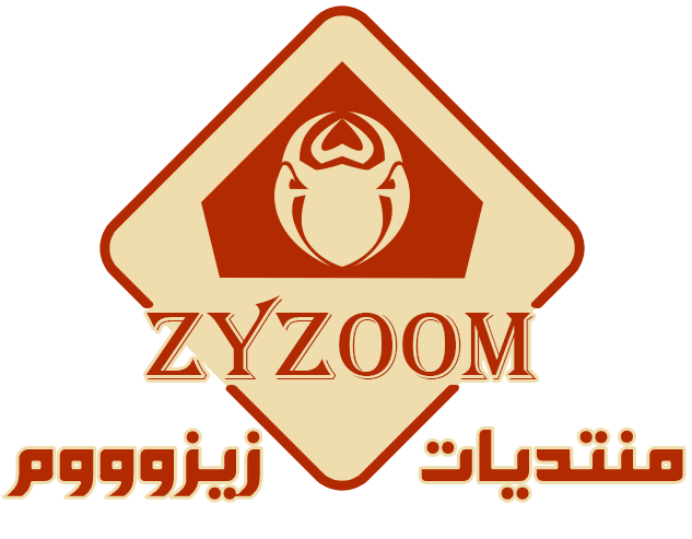 Logo zyzoom 2017- second model2.png