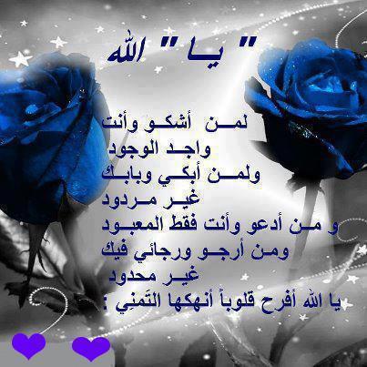 150292_453765724683735_1110752727_n.jpg