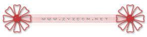 zyzoom.net 321.png