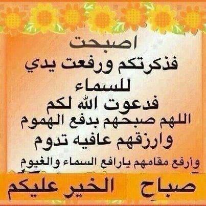 1452054_703024463042149_981187294_n.jpg