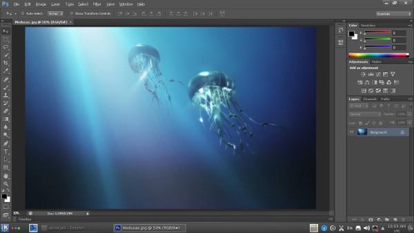 Adobe Photoshop CS6 Extended-FOR-UBUNTU WIN.jpg