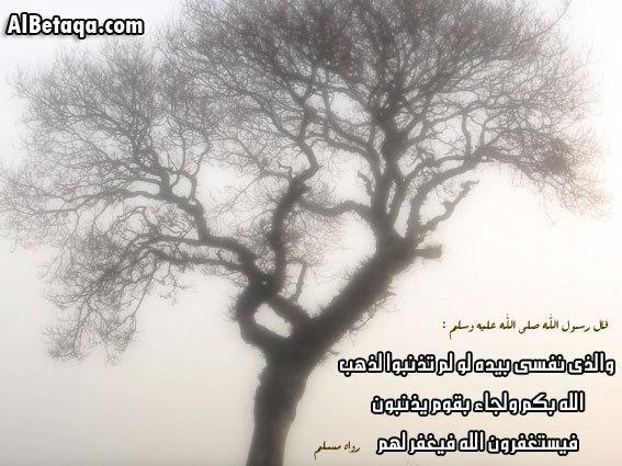 6500_130838251225_7015175_n.jpg