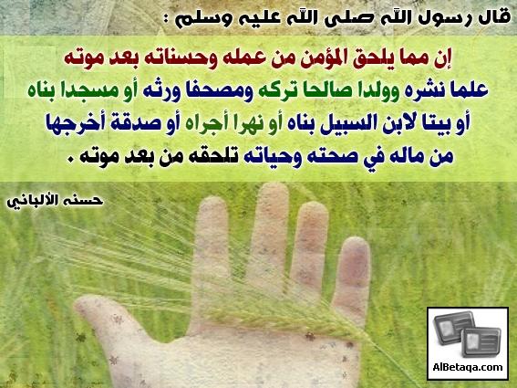 Ebadat0161.jpg