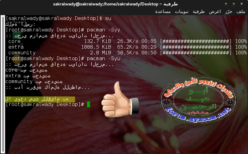 طرفية - sakralwady@sakralwady:-home-sakralwady-Desktop_012.png